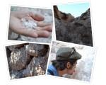 Salt Mines in Valle de laLuna