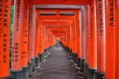 Amy's Pick - Fushimi Inari Shrine - Kyoto, Japan