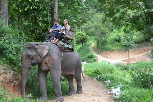 Mike's Pick - Elephant Reserve - Chiang Mai, Thailand